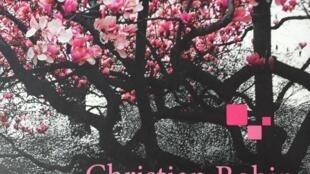 El traductor al español de 'Ressuciter', libro del escritor francés Christian Bobin, es el poeta español Jesús Montiel López.