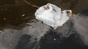 Sac biodégradable flottant dans une étendue d'eau. (Image d'illustration)