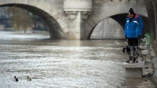 A flooded bank of the Seine river in Paris