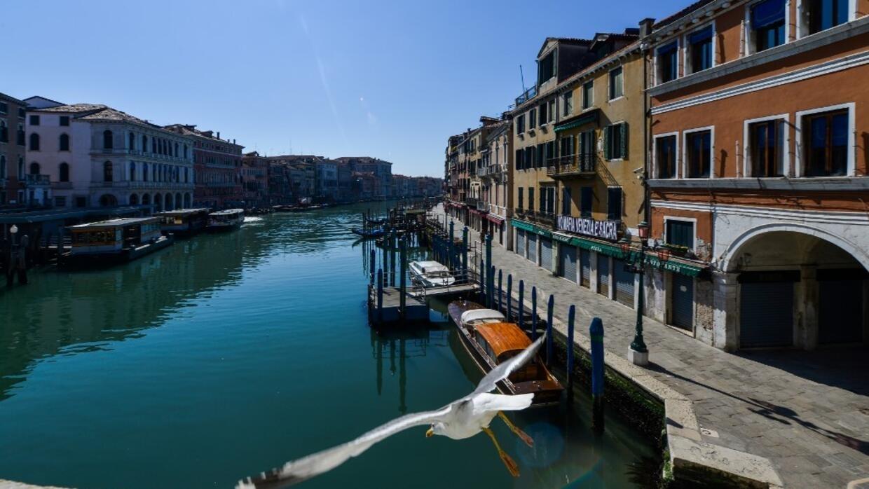 Los canales de Venecia lucen más limpios desde la suspensión del tráfico fluvial y de turistas.