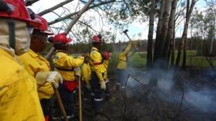 Пожарные в канадской провинции Альберта, июнь 2016 года