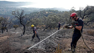 Firefighters spray water on hot spots after a fire in Bormes-les-Mimosas