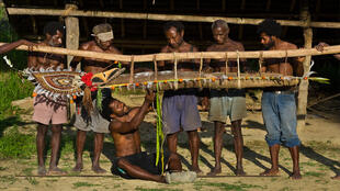 Papouasie Nouvelle-Guinée. La communauté commente la taille de l'igname au cours d'une cérémonie d'échange.