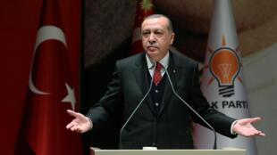 Le président turc Erdogan lors d'un discours à Ankara, le 17 novembre 2017.