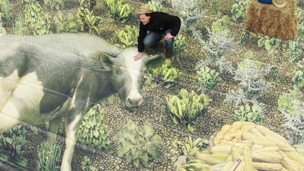 O futuro da PAC, a Política Agricola Comum é tema de discurssão em Bruxelas.