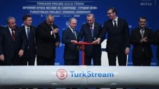 """رجب طیب اردوغان، رئیس جمهوری ترکیه به همراه ولادیمیر پوتین، همتای روس خود روز چهارشنبه ۸ ژانویه/ ۱۸دی خط لوله گاز """"ترک استریم"""" را به طور رسمی افتتاح کردند."""