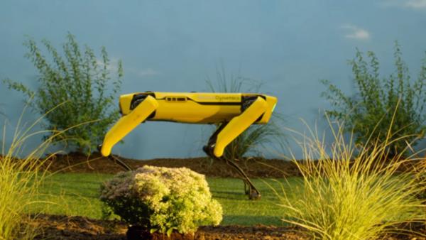 Spot, le robot-chien conçu par l'entreprise américaine Boston Dynamics