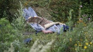 O corpo sem vida de um dos passageiros do vôo da Malaysian Airlines que se despenhou na região de Donetsk, a 17 de Julho de 2014.