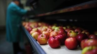 France exports 50,000 tonnes of fruit and vegetables to Russia each year.