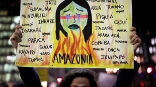 A protester demands more protection for the Amazon rainforest, in Sao Paulo, Brazil, August 23, 2019