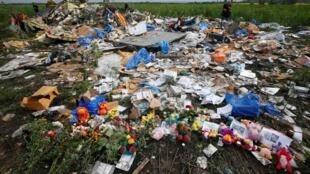 馬航MH17墜機現場烏克蘭頓涅茨克2014年7月19日
