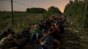 Migrants hoping to cross into Hungary sit along a railway track outside the village of Horgos in Serbia.