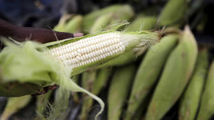 A hawker prepares a cob of corn at his makeshift shop in Soweto, South Africa