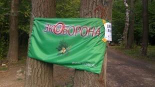 Вход в Добрый лагерь, 19 августа 2012 года