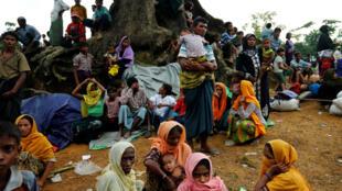 Người tị nạn Rohingya mới đến tại trại Kutupalang, Cox's Bazar, Bangladesh. Ảnh 30/08/2017.