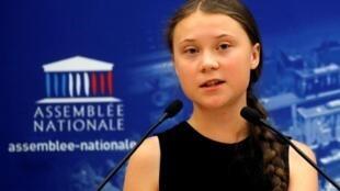 Swedish teen climate change activist Greta Thunberg addressed French parliament on 23 July 2019