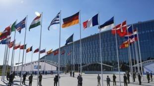 Les 29 drapeaux des pays membres de l'Otan. (Image d'illustration)