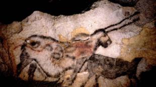 Фрагмент наскальной росписи в пещере Ласко.
