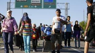 Refugiados sírios vão a pé da Turquia à Grécia