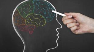 Estimulación cognitiva, buena alimentación y ejercicio pueden ayudar a disminuir el riesgo de desarrollar la enfermedad de Alzheimer.