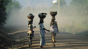 Villageoises revenant du marché au nord Cameroun.