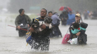 Isiah Courtney carries his dog Bruce through flood waters from Tropical Storm Harvey in Beaumont Place, Texas, U.S., on August 28, 2017.