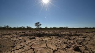 Cabo Verde já utilizou 48% das verbas do plano de emergência para atenuar os efeitos da seca.