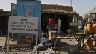 Les deux villages attaqués par Boko Haram sont situés dans la région de Diffa, non loin de la frontière avec le Nigeria.