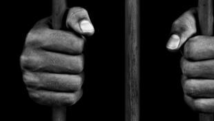 استفاده از اعضای بدن محکومین به اعدام جهت عمل پیوند