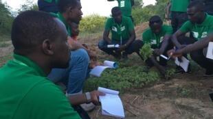 De l'irrigation aux semences, en passant par la lutte contre les ravageurs, tout est passé en revu avec des experts du secteur. Le Aya Boot Camp se tient jusqu'au 18 octobre 2019.