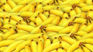 Segundo a empresária Filomena Matimbe, a farinha de banana é uma alternativa viável perante a escassez de alimentos.