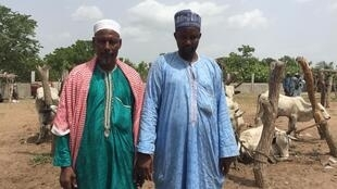 Ousmane Salifou et Abdoulaye Tchoumon, commerçants et éleveurs nigérians, au marché de Savè où ils viennent acheter des boeufs.