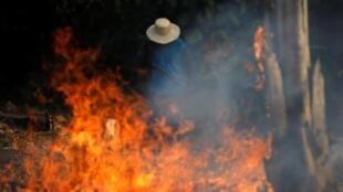 Un homme travaille dans une région en feu de la jungle amazonienne en train d'être défrichée, dans l'État d'Amazonas, au Brésil.