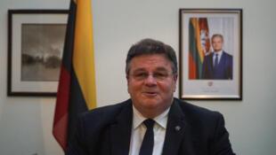 Глава МИД Литвы Линас Линкявичюс в Минске 4 февраля 2020.