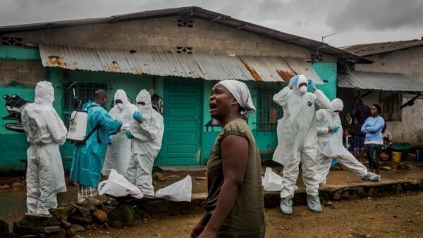 OMS é criticada por um grupo de especialistas sobre gestão da crise de epiemia do ebola.