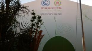 La cumbre del clima de la ONU tuvo lugar en Marrakech del 7 al 18 de noviembre de 2016.