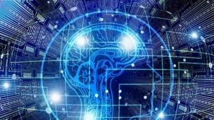 La semaine du cerveau s'est déroulée du 11 au 17 mars 2019.