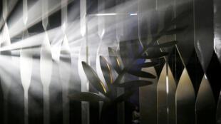 Qui va remporer la Palme d'or pour la 69e édition du Festival de Cannes ?