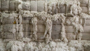Des balles de coton stockées dans un entrepôt d'une usine de fil de coton en Chine.