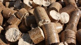 Têm sido tomadas várias medidas para evitar que o comércio ilegal continue a desenvolver-se, a mais recente tendo sido a introdução de uma lei que proíbe a exportação de madeira em toros.