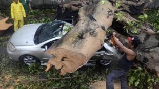 Bão Rammasun làm 29 người chết và mất tích. Thiệt hại vật chất lên tới 4,4 triệu euro - REUTERS