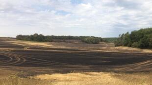 160 hectares de champs et de bois sont partis en fumée dans le village de la Forêt-le-Roi dans l'Essonne, le 26 juillet 2019.