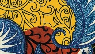 Couverture du livre de Vincent Hein «Les flamboyants d'Abidjan»
