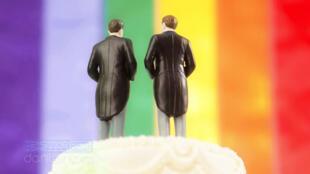 愛爾蘭將於2015年5月22日就同性婚姻合法化舉行公投