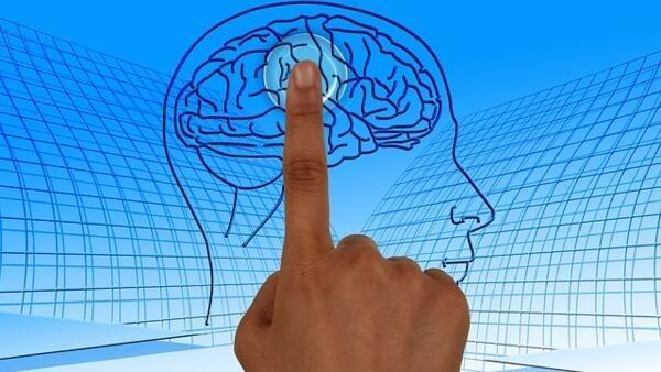 Estudos na área de psicomicrobiótica vem evoluindo e trazendo resultados importantes.