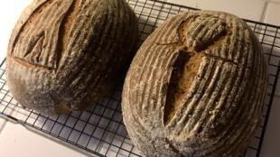 """Хлеб, испеченный с использованием древнеегипетских дрожжей с иероглифами """"Ди"""" и """"Анх"""", что означает """"Дарованная жизнь"""""""