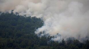 Khói cháy rừng tại Palangka Raya, tỉnh Miền Trung Kalimantan, Indonesia, 14/09/2019