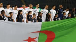 Les Fennecs d'Algérie sont favoris face à la Guinée pour les huitièmes de finale de la CAN 2019.