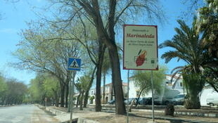 Marinaleda est une commune de la province de Séville.