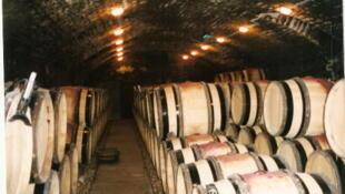 The cellar at Romanée-Conti